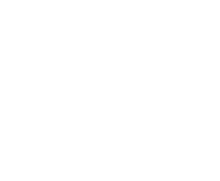 Big Data/Analytics
